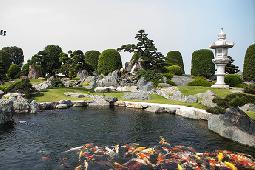 15 mẫu hồ cá koi ngoài trời đẹp nhất hiện nay