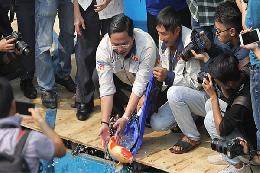 Thả cá koi đắt tiền xuống sông Tô Lịch