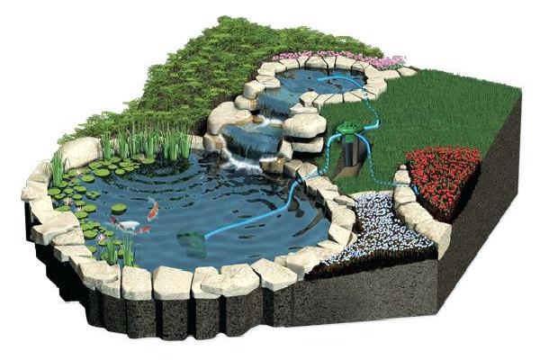 bản vẽ hồ cá koi 3D