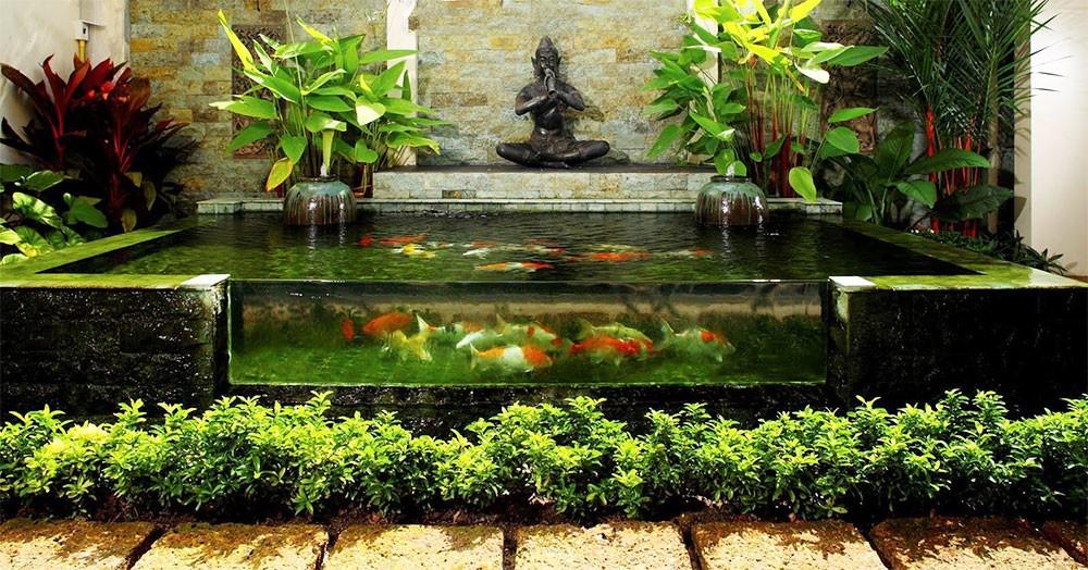 Hồ cá Koi Trung Đức mini trong nhà