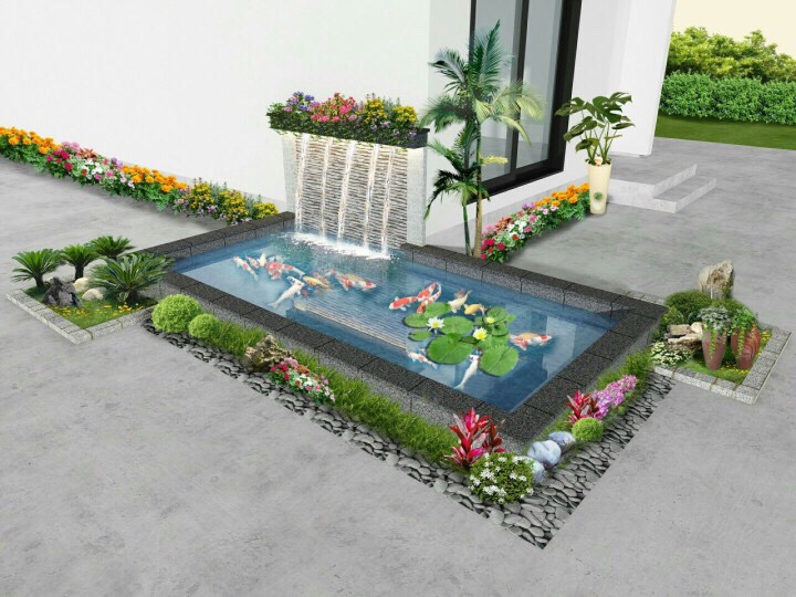 hồ cá koi thiết kế 3D của Trung Đức