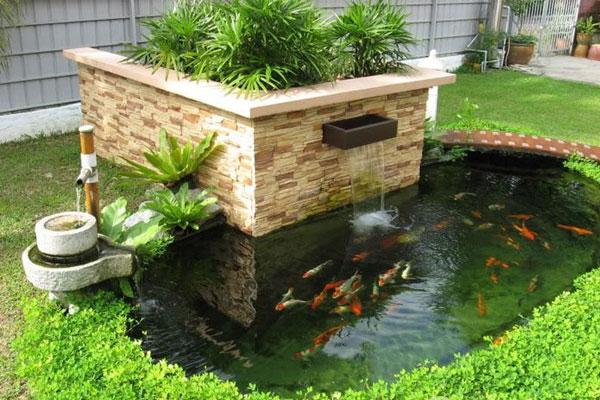 kích thước hồ cá koi mini