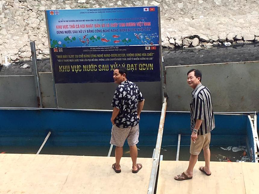 Thả cá koi nhật xuống sông tô Lịch ra sao